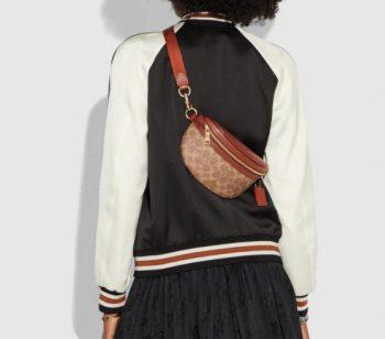 Stylish Belt Bag